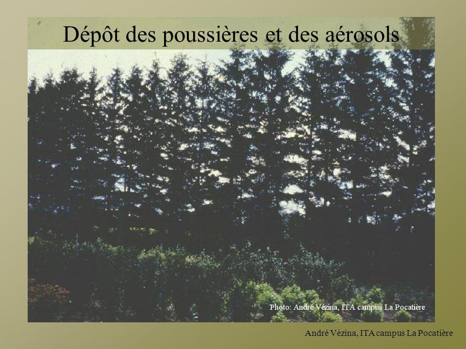 André Vézina, ITA campus La Pocatière Dépôt des poussières et des aérosols