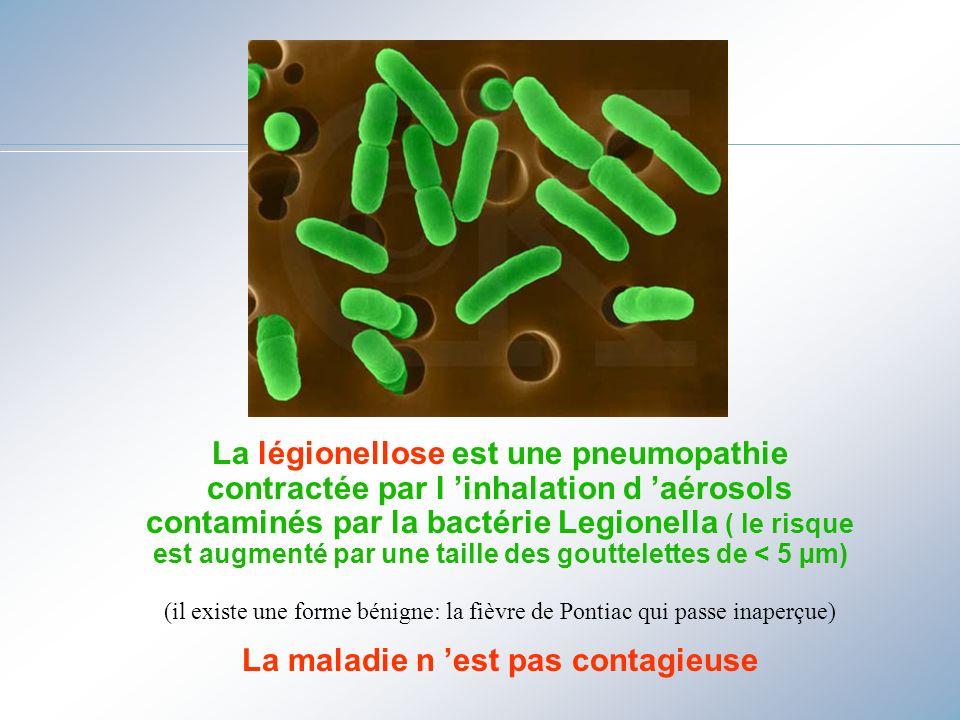 La légionellose est une pneumopathie contractée par l inhalation d aérosols contaminés par la bactérie Legionella ( le risque est augmenté par une tai