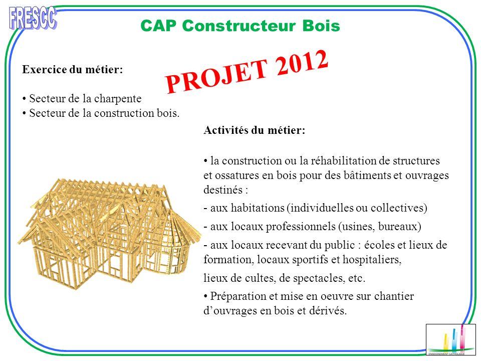 CAP Constructeur Bois Réalisation de revêtement Réalisation Descalier PROJET 2012 Exercice du métier: Secteur de la charpente Secteur de la constructi