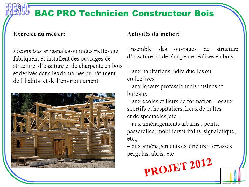 BAC PRO Technicien Constructeur Bois Réalisation descalier Exercice du métier: Entreprises artisanales ou industrielles qui fabriquent et installent d