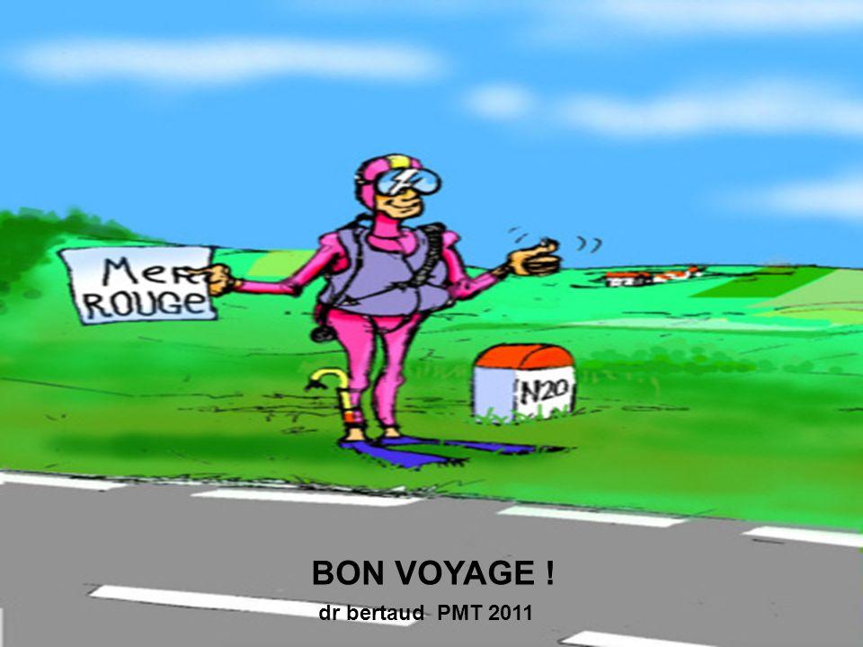 BON VOYAGE ! dr bertaud PMT 2011