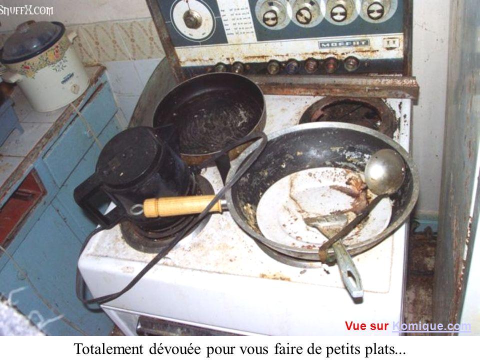 Totalement dévouée pour vous faire de petits plats... Vue sur Komique.comKomique.com