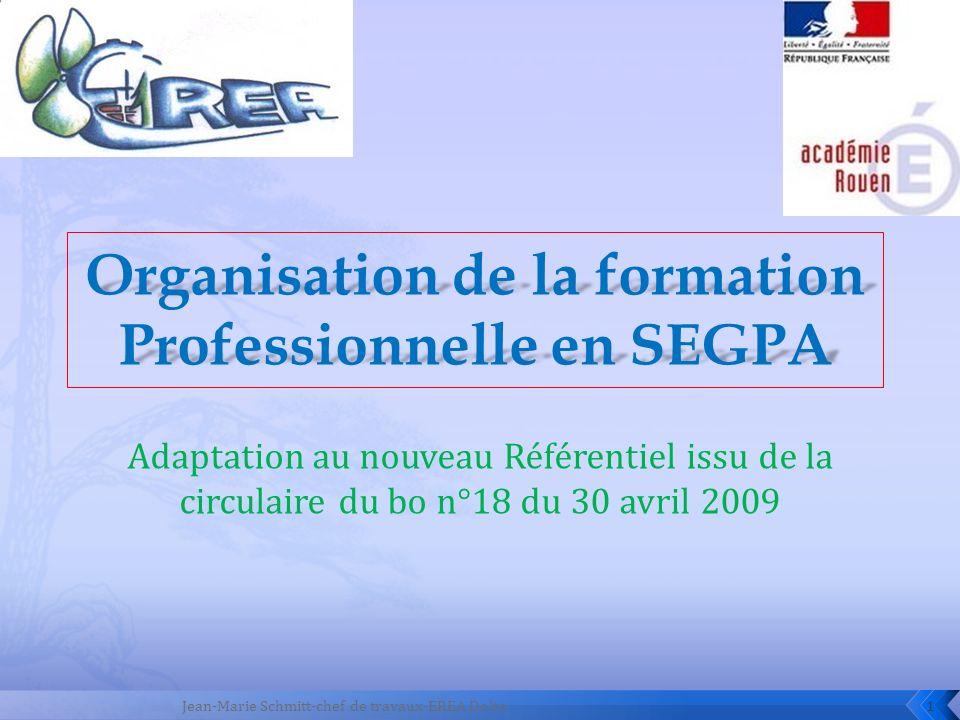Adaptation au nouveau Référentiel issu de la circulaire du bo n°18 du 30 avril 2009 1Jean-Marie Schmitt-chef de travaux-EREA Dolto