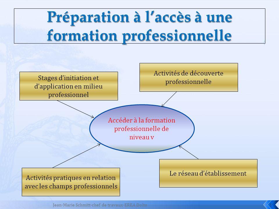 3 Accéder à la formation professionnelle de niveau v Activités pratiques en relation avec les champs professionnels Stages dinitiation et dapplication