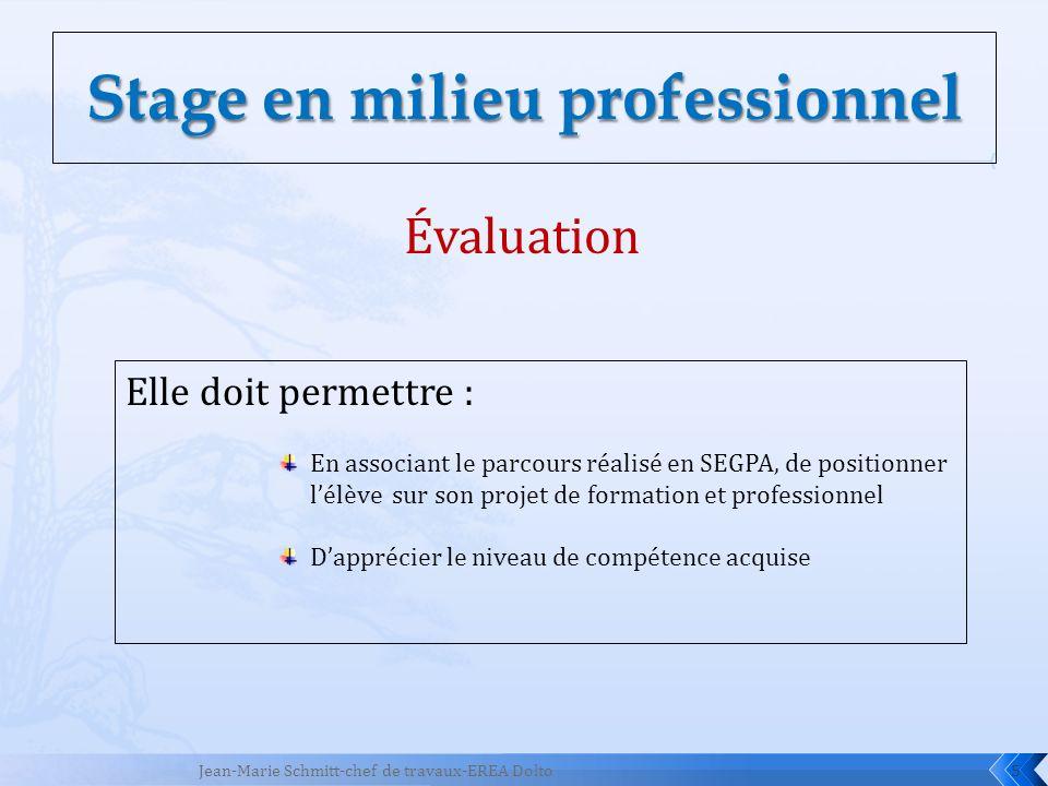 5 Évaluation Elle doit permettre : En associant le parcours réalisé en SEGPA, de positionner lélève sur son projet de formation et professionnel Dappr
