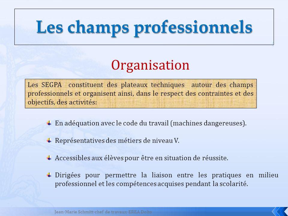 6 Organisation En adéquation avec le code du travail (machines dangereuses). Représentatives des métiers de niveau V. Accessibles aux élèves pour être