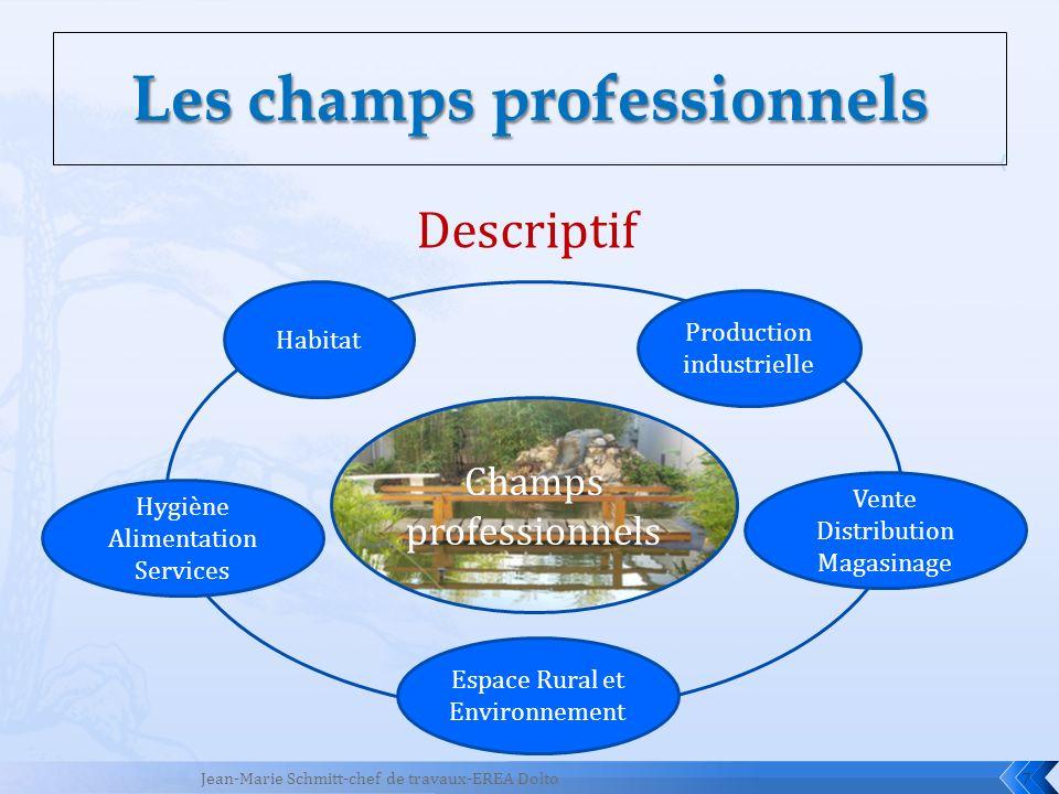 7 Descriptif Champs professionnels Habitat Hygiène Alimentation Services Espace Rural et Environnement Vente Distribution Magasinage Production indust