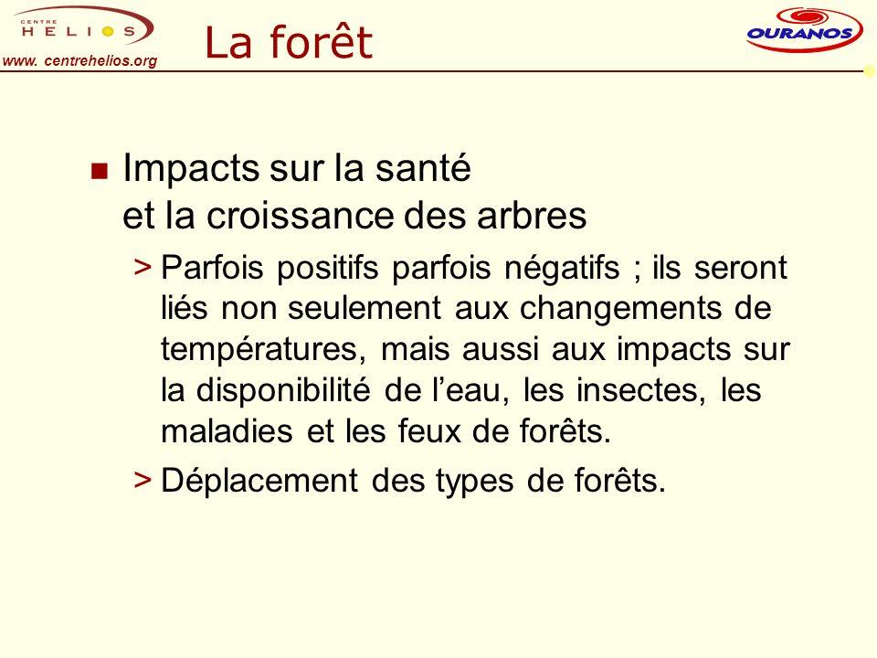 www. centrehelios.org La forêt n Impacts sur la santé et la croissance des arbres >Parfois positifs parfois négatifs ; ils seront liés non seulement a