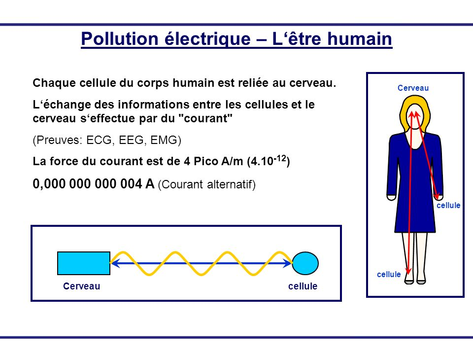 Cerveaucellule Pollution électrique – Lêtre humain Chaque cellule du corps humain est reliée au cerveau. Léchange des informations entre les cellules
