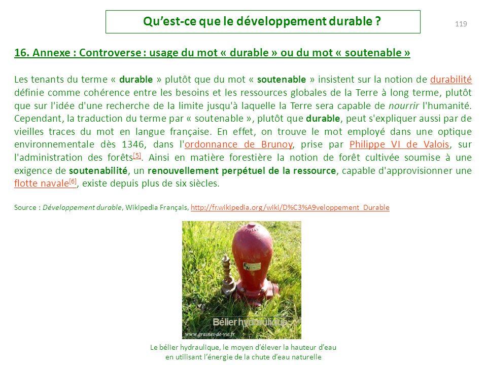 118 Quest-ce que le développement durable .15.