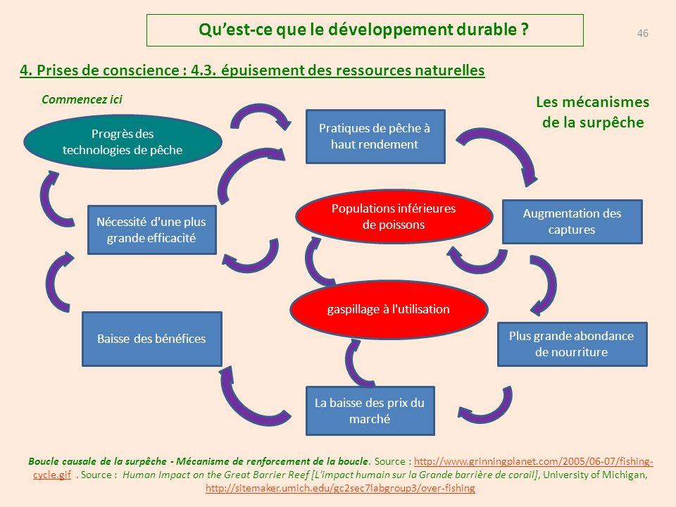 45 Quest-ce que le développement durable .4. Prises de conscience : 4.3.