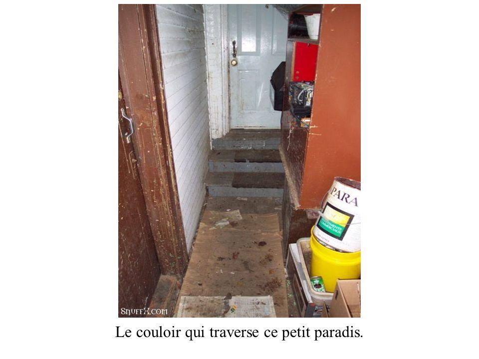 Le couloir qui traverse ce petit paradis.