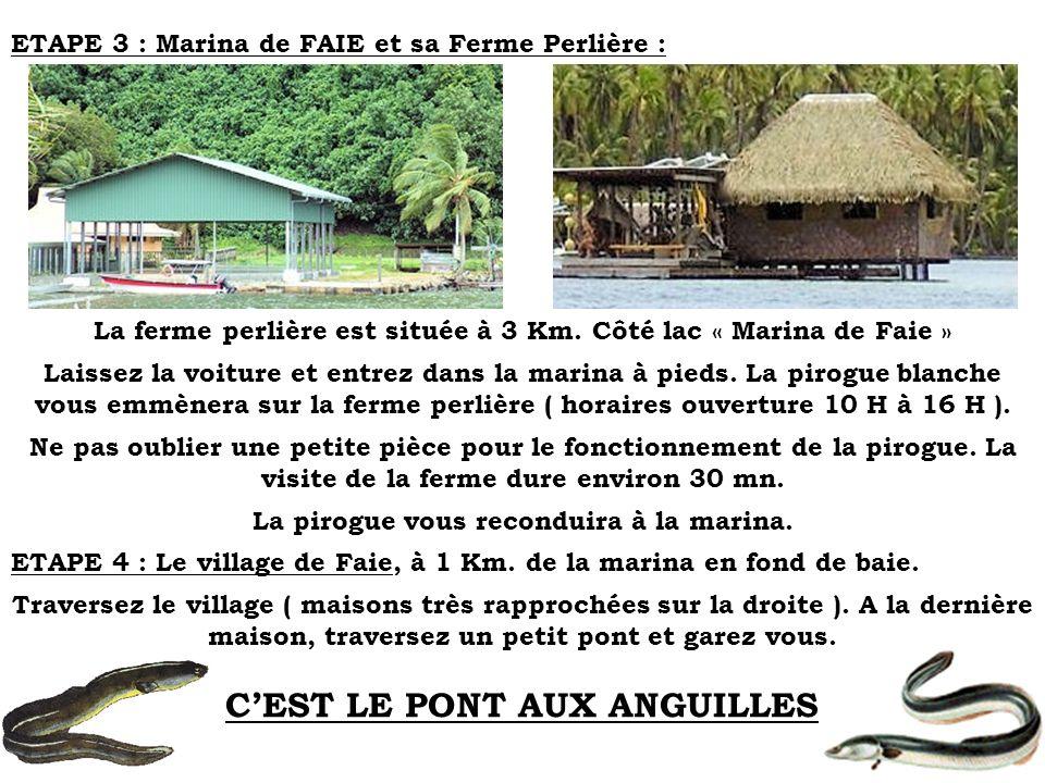 ETAPE 3 : Marina de FAIE et sa Ferme Perlière : La ferme perlière est située à 3 Km. Côté lac « Marina de Faie » Laissez la voiture et entrez dans la