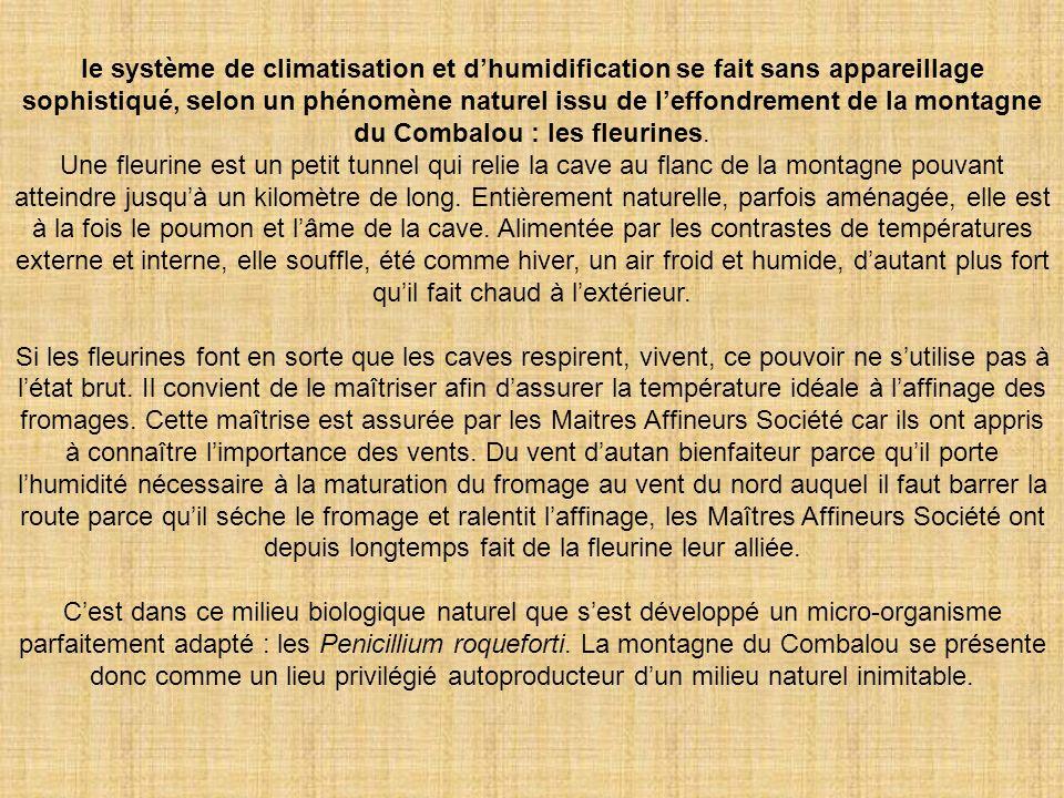 le système de climatisation et dhumidification se fait sans appareillage sophistiqué, selon un phénomène naturel issu de leffondrement de la montagne du Combalou : les fleurines.
