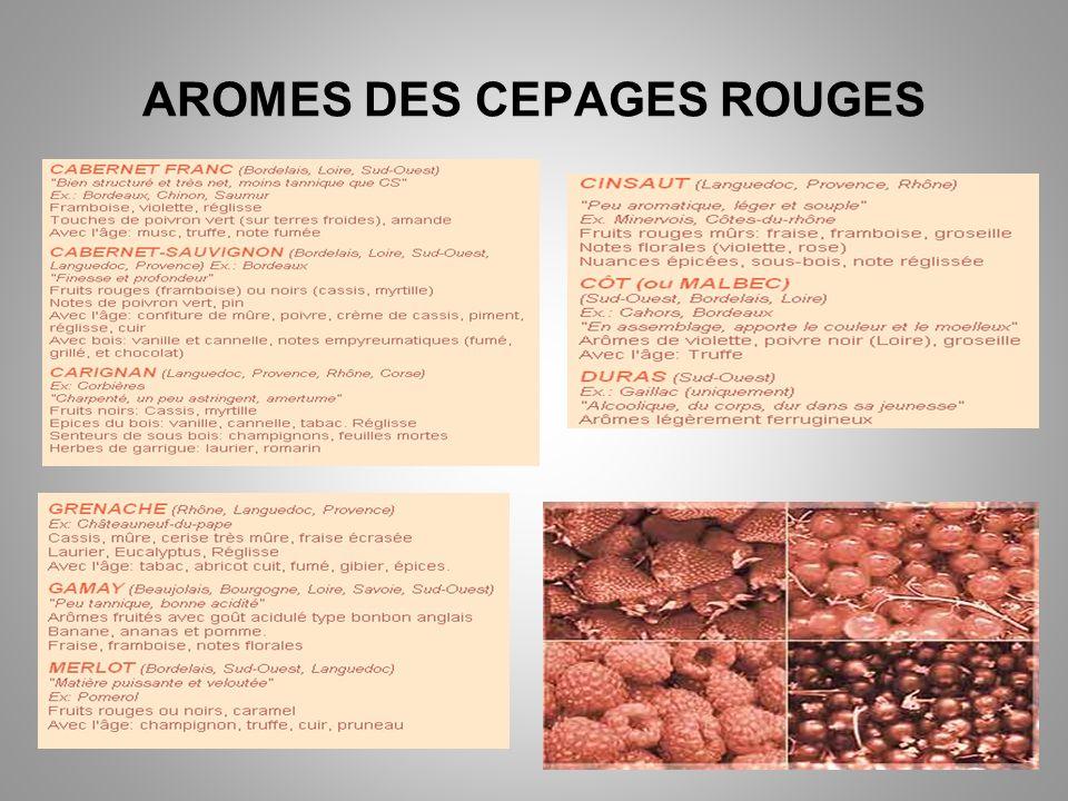 AROMES DES CEPAGES ROUGES