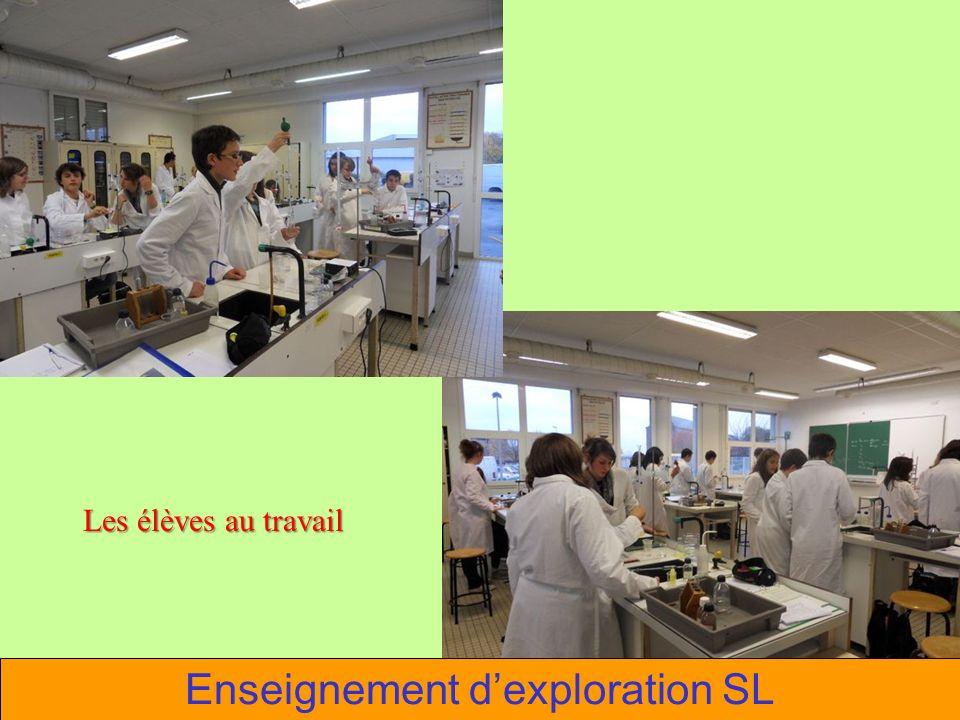 Les élèves au travail Enseignement dexploration SL