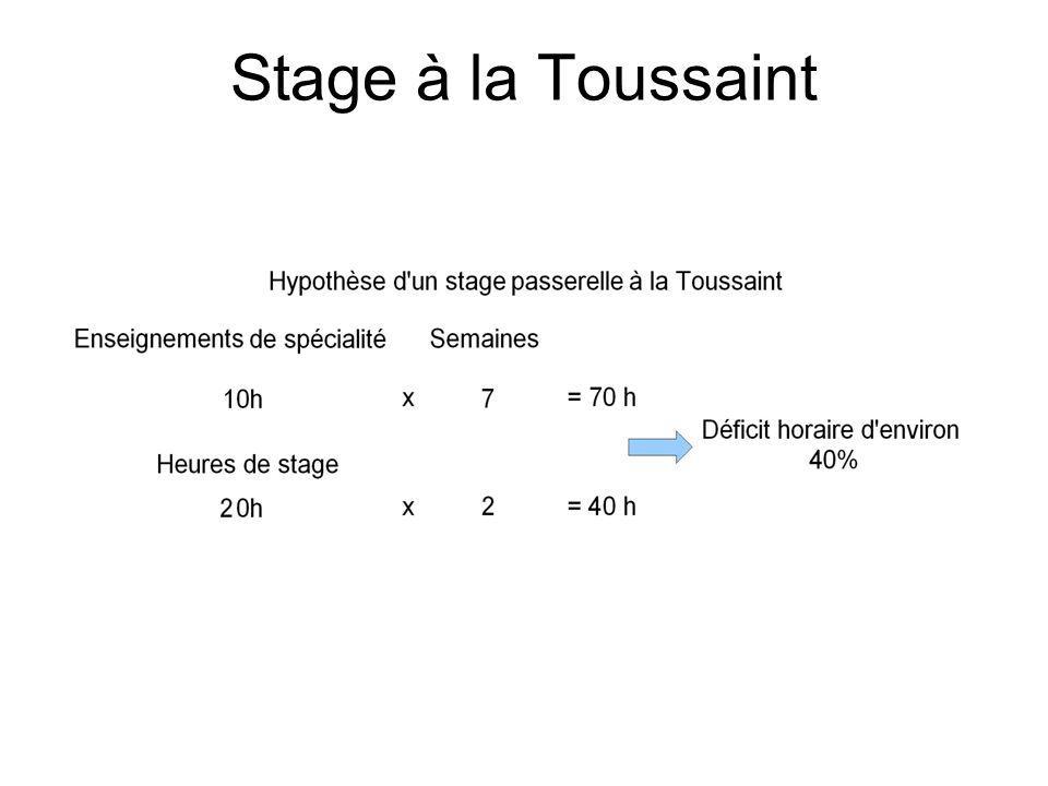 Stage à la Toussaint