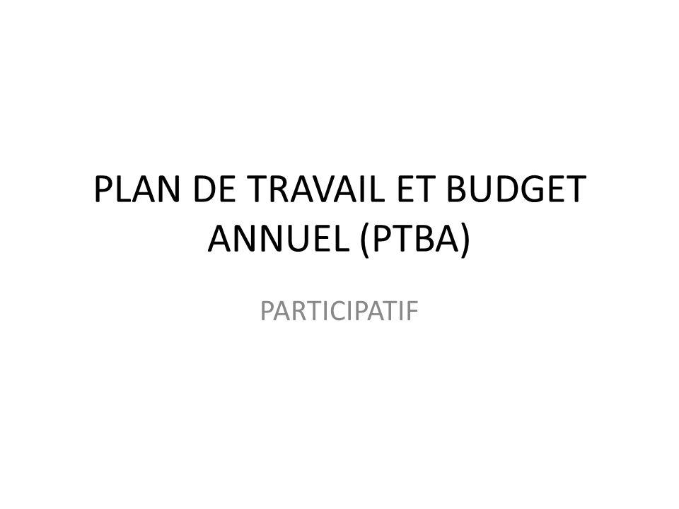 PLAN DE TRAVAIL ET BUDGET ANNUEL (PTBA) PARTICIPATIF
