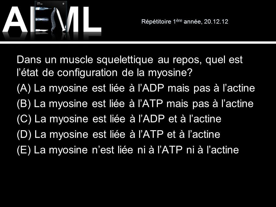 Répétitoire 1 ère année, 20.12.12 Dans un muscle squelettique au repos, quel est létat de configuration de la myosine? (A) La myosine est liée à lADP
