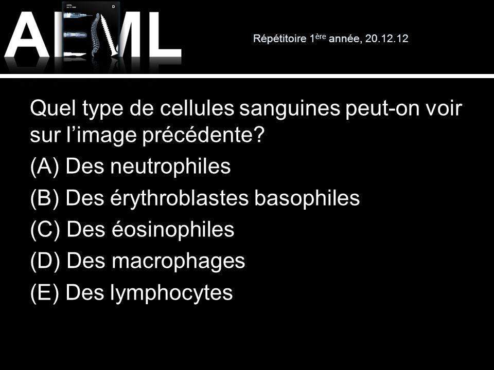 Quel type de cellules sanguines peut-on voir sur limage précédente? (A) Des neutrophiles (B) Des érythroblastes basophiles (C) Des éosinophiles (D) De