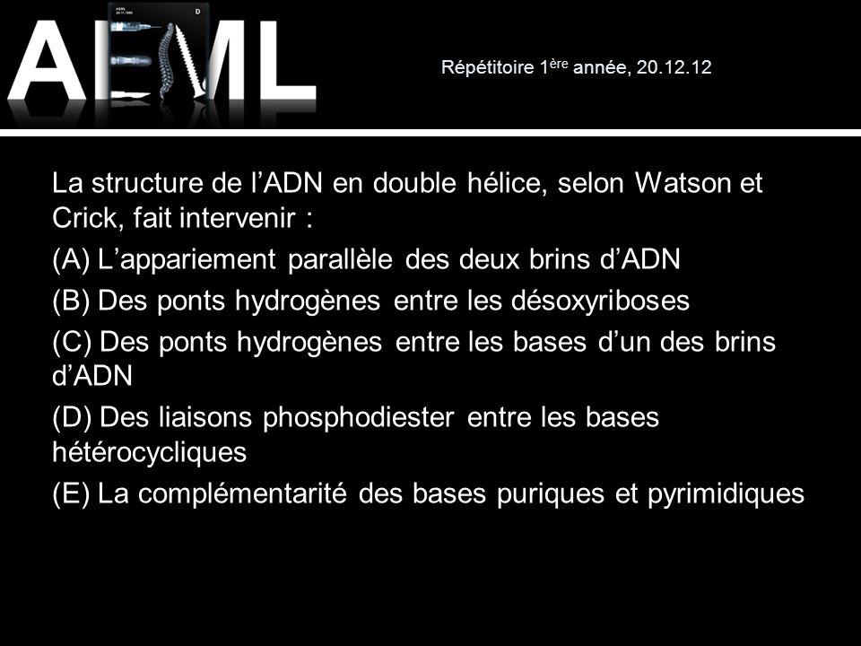 Répétitoire 1 ère année, 20.12.12 La structure de lADN en double hélice, selon Watson et Crick, fait intervenir : (A) Lappariement parallèle des deux