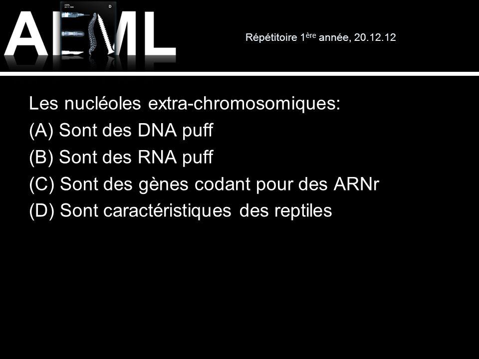 Répétitoire 1 ère année, 20.12.12 Les nucléoles extra-chromosomiques: (A) Sont des DNA puff (B) Sont des RNA puff (C) Sont des gènes codant pour des A