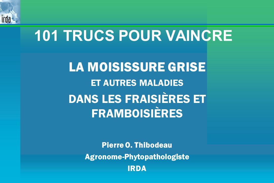 101 TRUCS POUR VAINCRE LA MOISISSURE GRISE ET AUTRES MALADIES DANS LES FRAISIÈRES ET FRAMBOISIÈRES Pierre O. Thibodeau Agronome-Phytopathologiste IRDA