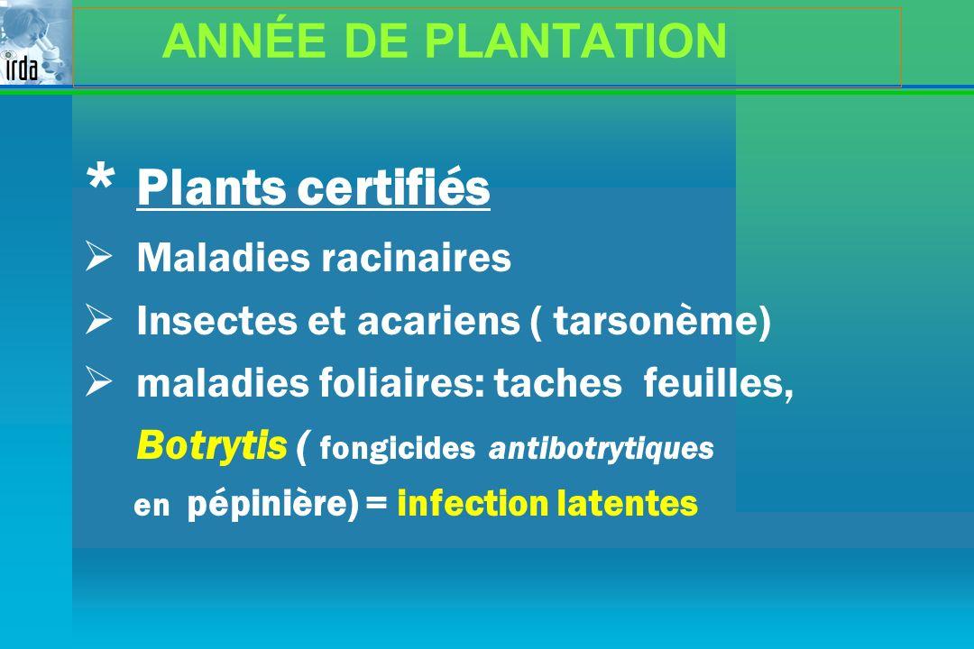 ANNÉE DE PLANTATION * Plants certifiés Maladies racinaires Insectes et acariens ( tarsonème) maladies foliaires: taches feuilles, Botrytis ( fongicide