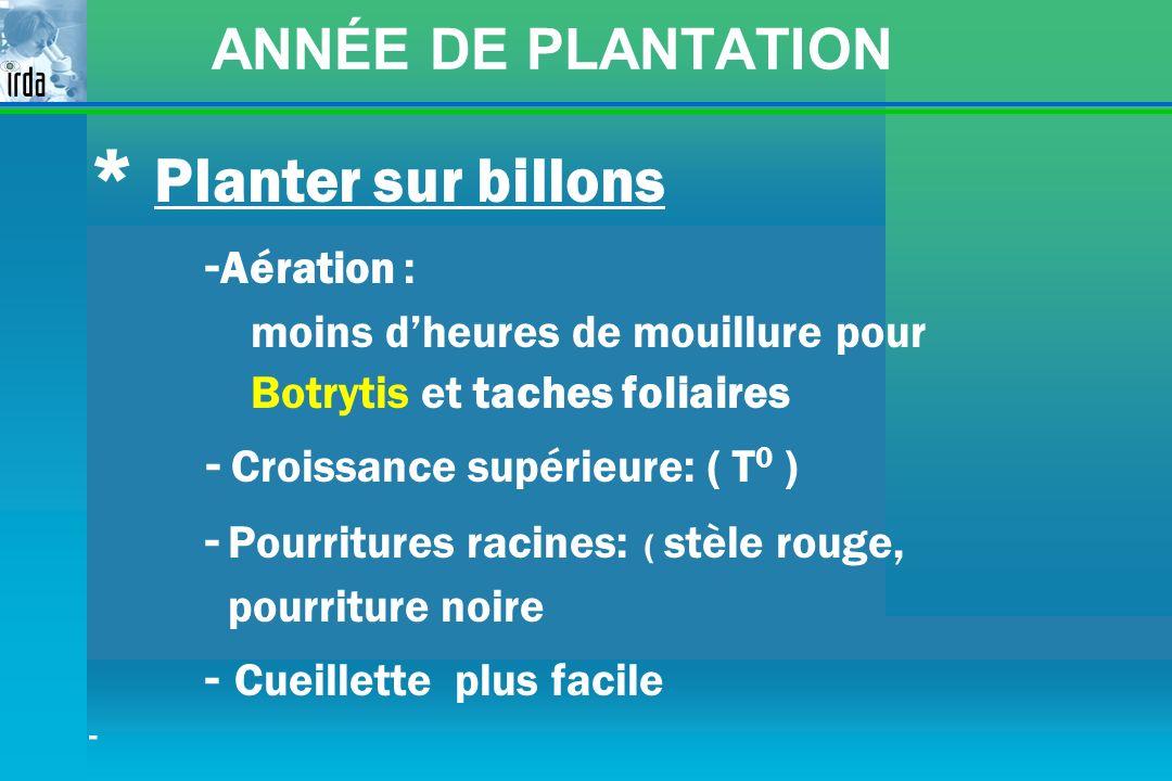 ANNÉE DE PLANTATION * Planter sur billons - Aération : moins dheures de mouillure pour Botrytis et taches foliaires - Croissance supérieure: ( T 0 ) -