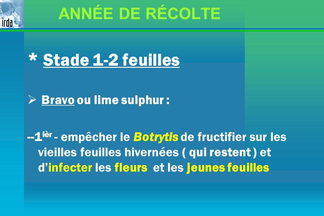 ANNÉE DE RÉCOLTE * Stade 1-2 feuilles Bravo ou lime sulphur : --1 ièr - empêcher le Botrytis de fructifier sur les vieilles feuilles hivernées ( qui r