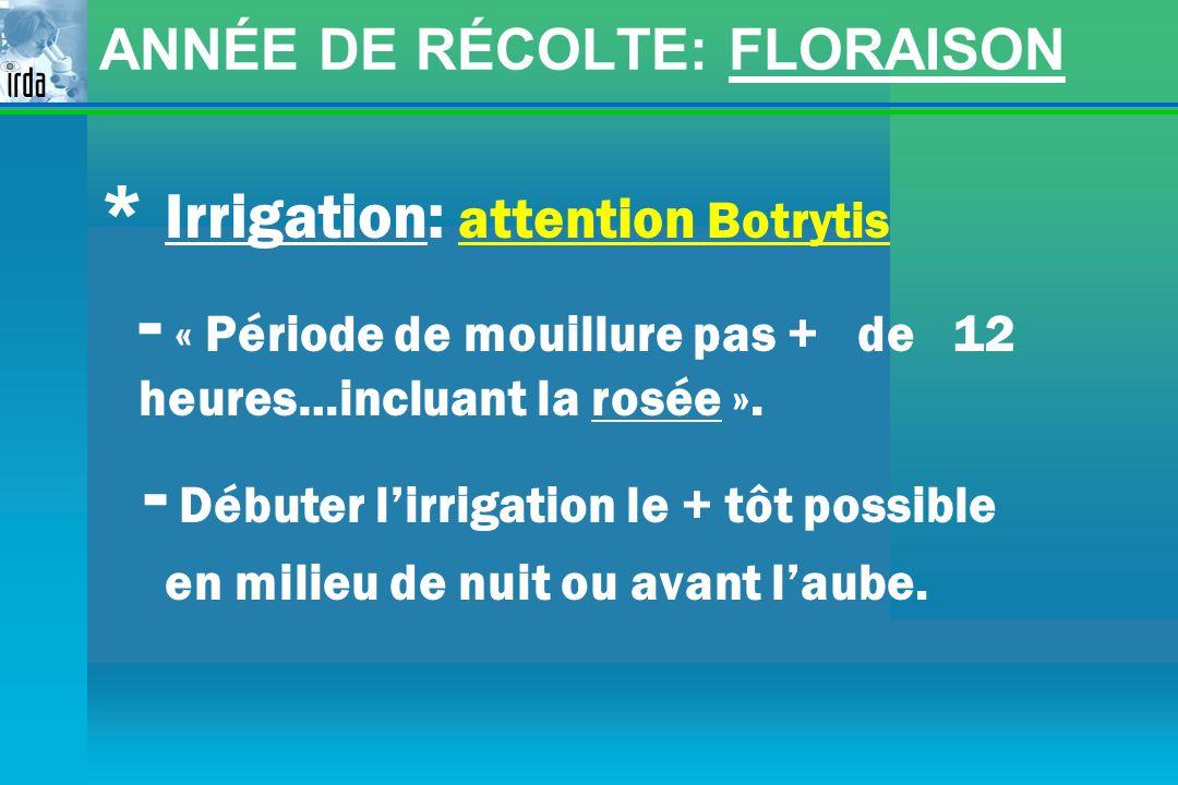 ANNÉE DE RÉCOLTE: FLORAISON * Irrigation: attention Botrytis - « Période de mouillure pas + de 12 heures…incluant la rosée ». - Débuter lirrigation le
