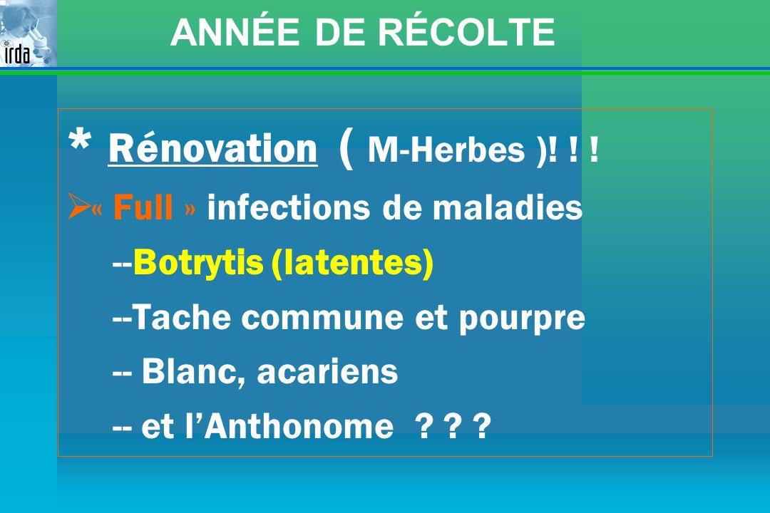 ANNÉE DE RÉCOLTE * Rénovation ( M-Herbes )! ! ! « Full » infections de maladies --Botrytis (latentes) --Tache commune et pourpre -- Blanc, acariens --