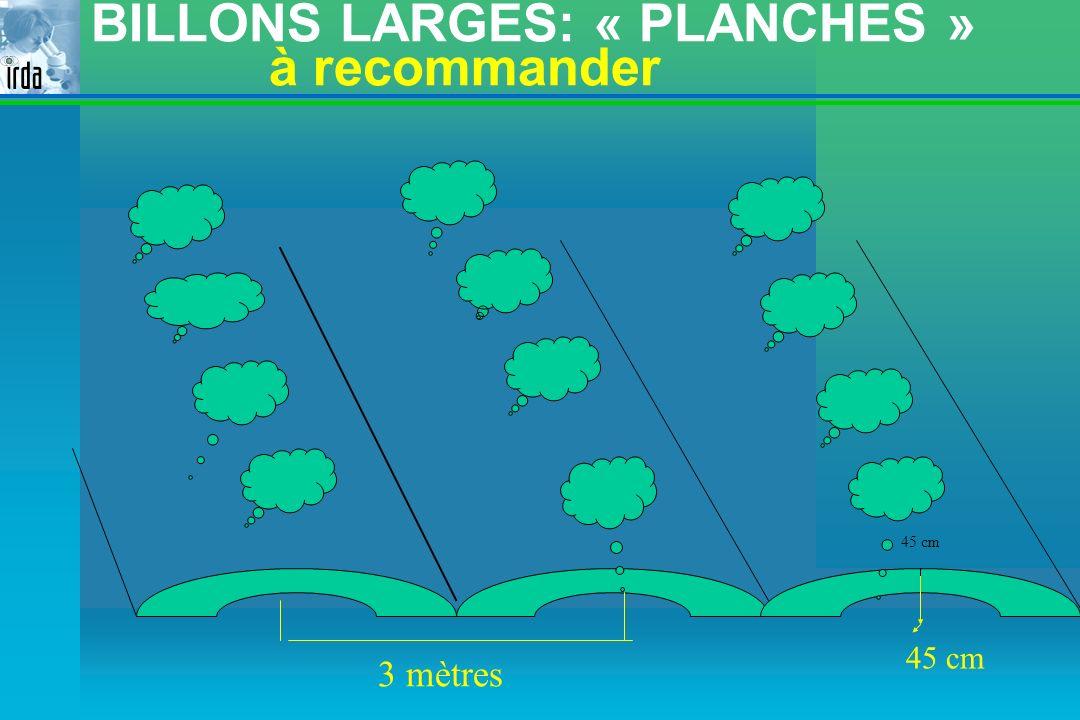 BILLONS LARGES: « PLANCHES » à recommander 45 cm 3 mètres 45 cm 45 cm 45 cm