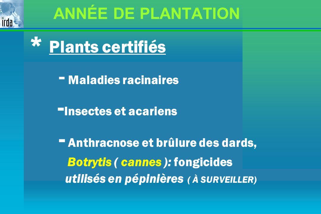 ANNÉE DE PLANTATION * Plants certifiés - Maladies racinaires - Insectes et acariens - Anthracnose et brûlure des dards, Botrytis ( cannes ): fongicide