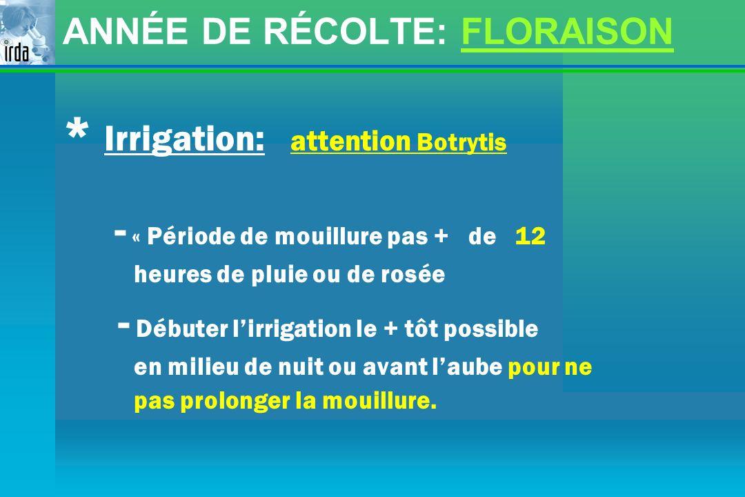 ANNÉE DE RÉCOLTE: FLORAISON * Irrigation: attention Botrytis - « Période de mouillure pas + de 12 heures de pluie ou de rosée - Débuter lirrigation le