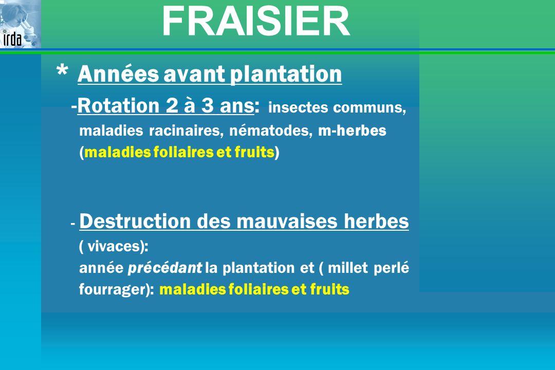 FRAISIER * Années avant plantation -Rotation 2 à 3 ans: insectes communs, maladies racinaires, nématodes, m-herbes (maladies foliaires et fruits) - De