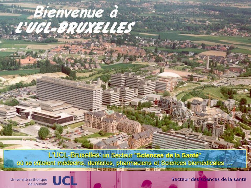 L'UCL-Bruxelles: un Secteur
