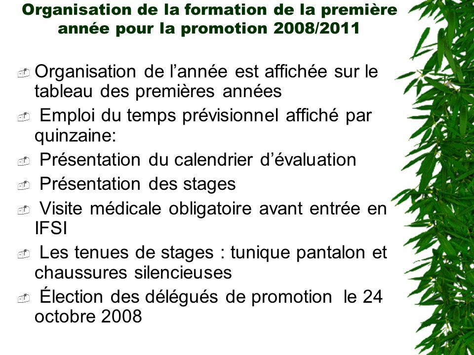 Organisation de la formation de la première année pour la promotion 2008/2011 Organisation de lannée est affichée sur le tableau des premières années