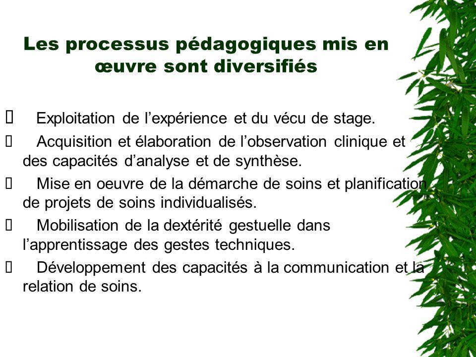 Les processus pédagogiques mis en œuvre sont diversifiés Exploitation de lexpérience et du vécu de stage. Acquisition et élaboration de lobservation c
