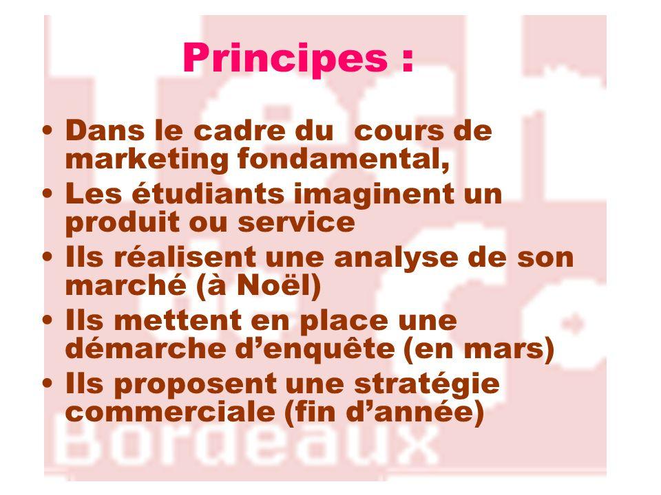 Principes : Dans le cadre du cours de marketing fondamental, Les étudiants imaginent un produit ou service Ils réalisent une analyse de son marché (à