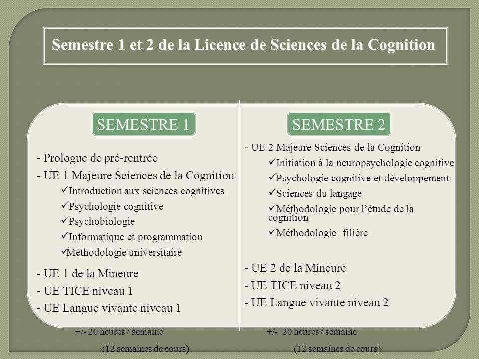 Semestre 1 et 2 de la Licence de Sciences de la Cognition SEMESTRE 1SEMESTRE 2 - Prologue de pré-rentrée - UE 1 Majeure Sciences de la Cognition Intro