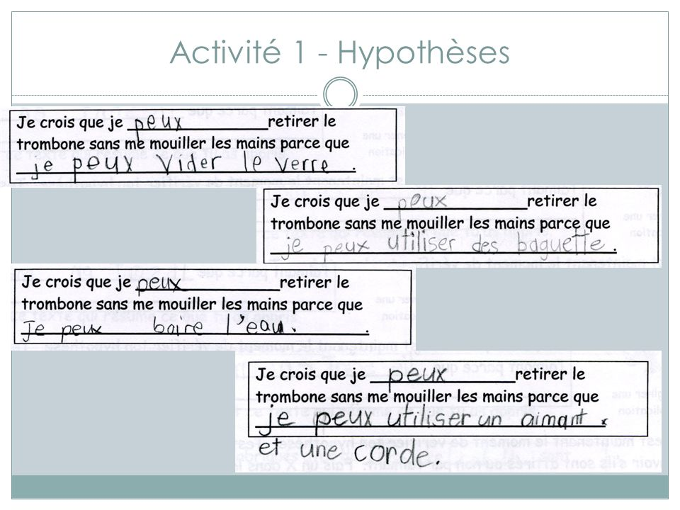 Activité 1 - Hypothèses