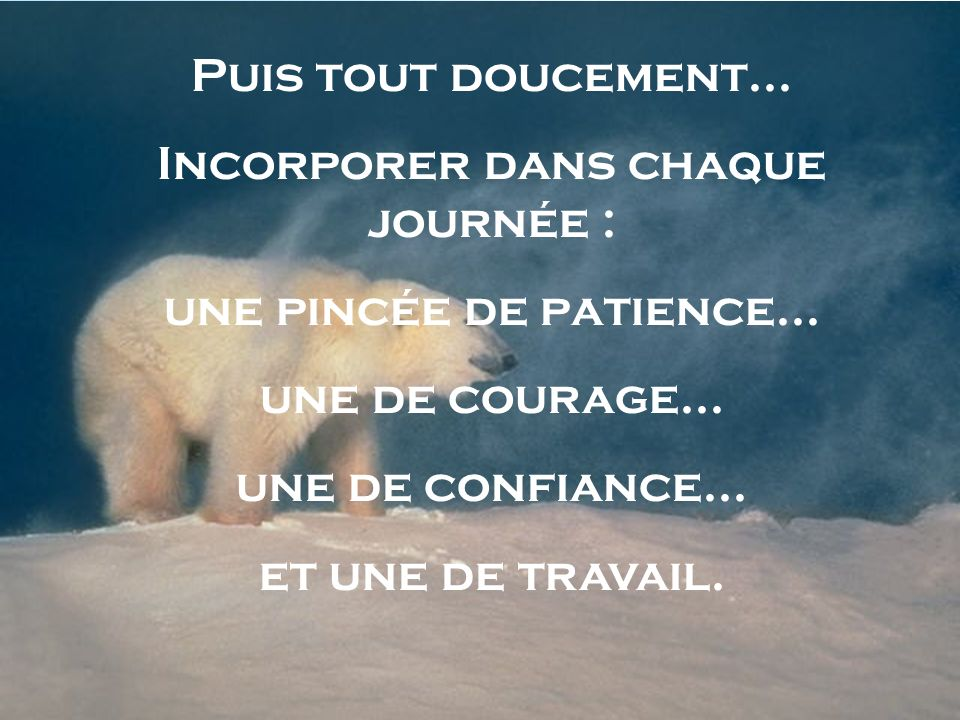 Puis tout doucement... Incorporer dans chaque journée : une pincée de patience... une de courage... une de confiance... et une de travail.