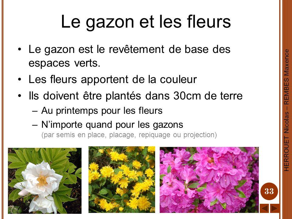 HERROUET Nicolas – REMBES Maxence 33 Le gazon et les fleurs Le gazon est le revêtement de base des espaces verts. Les fleurs apportent de la couleur I