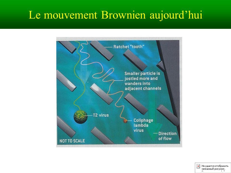 Le mouvement Brownien aujourdhui