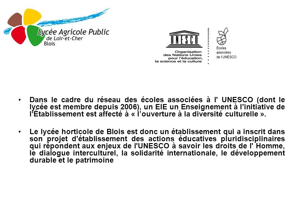Dans le cadre du réseau des écoles associées à l' UNESCO (dont le lycée est membre depuis 2006), un EIE un Enseignement à l'initiative de l'Établissem