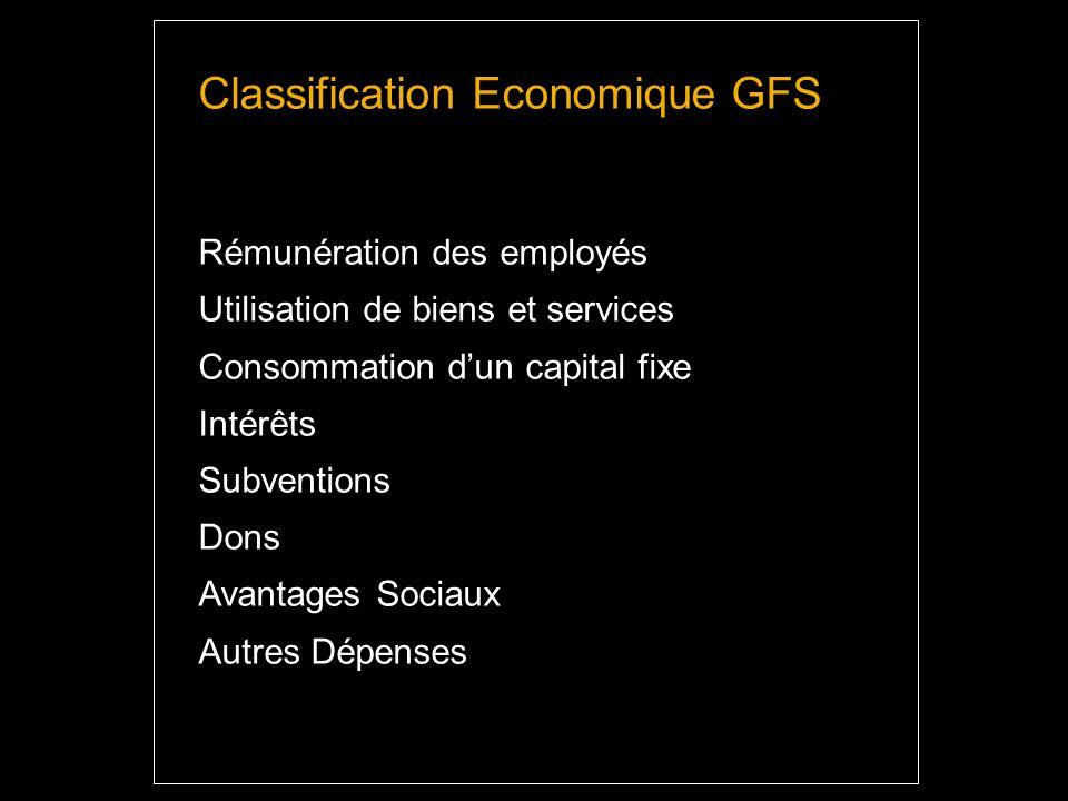 Classification Economique GFS Rémunération des employés Utilisation de biens et services Consommation dun capital fixe Intérêts Subventions Dons Avantages Sociaux Autres Dépenses