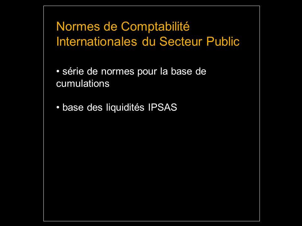 Normes de Comptabilité Internationales du Secteur Public série de normes pour la base de cumulations base des liquidités IPSAS