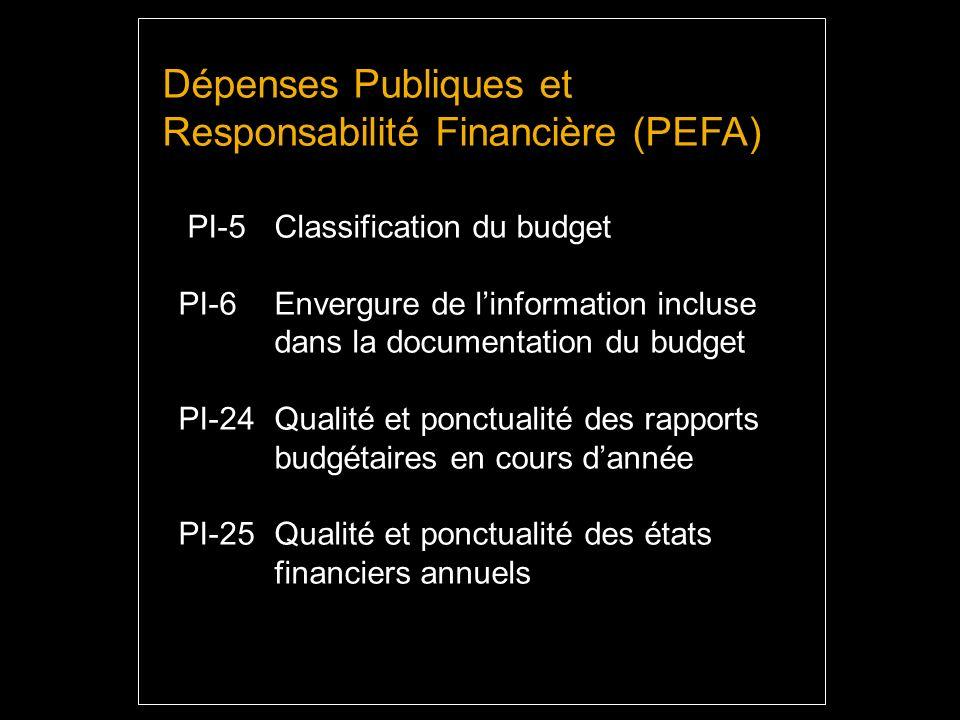 Dépenses Publiques et Responsabilité Financière (PEFA) PI-5 Classification du budget PI-6 Envergure de linformation incluse dans la documentation du budget PI-24 Qualité et ponctualité des rapports budgétaires en cours dannée PI-25 Qualité et ponctualité des états financiers annuels
