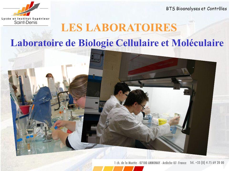 BTS Bioanalyses et Contrôles LES LABORATOIRES Laboratoire de Biologie Cellulaire et Moléculaire